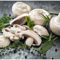 Замразени печурки - ленти - 2,5 кг.